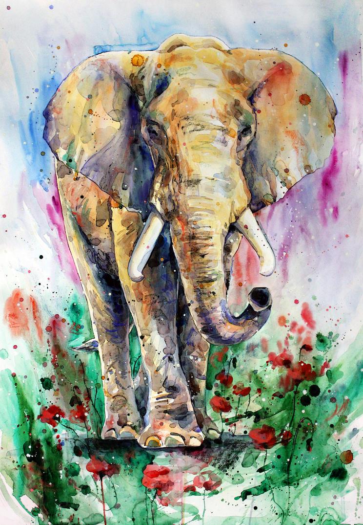 elephant by ElenaShved