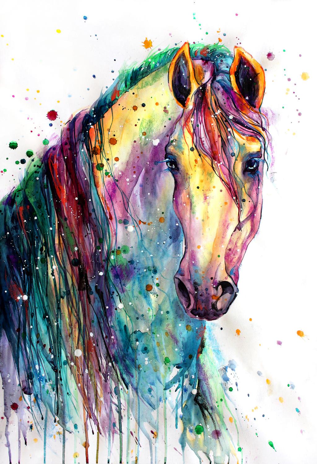 rainbow horsey2 by elenashved on deviantart