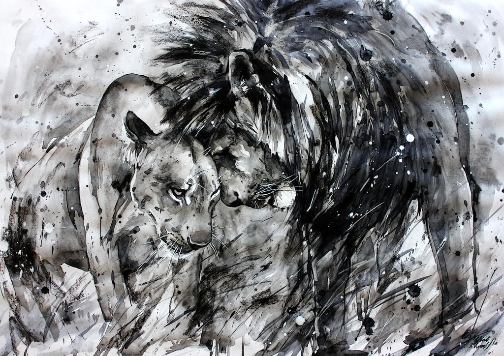 black and white lions by ElenaShved