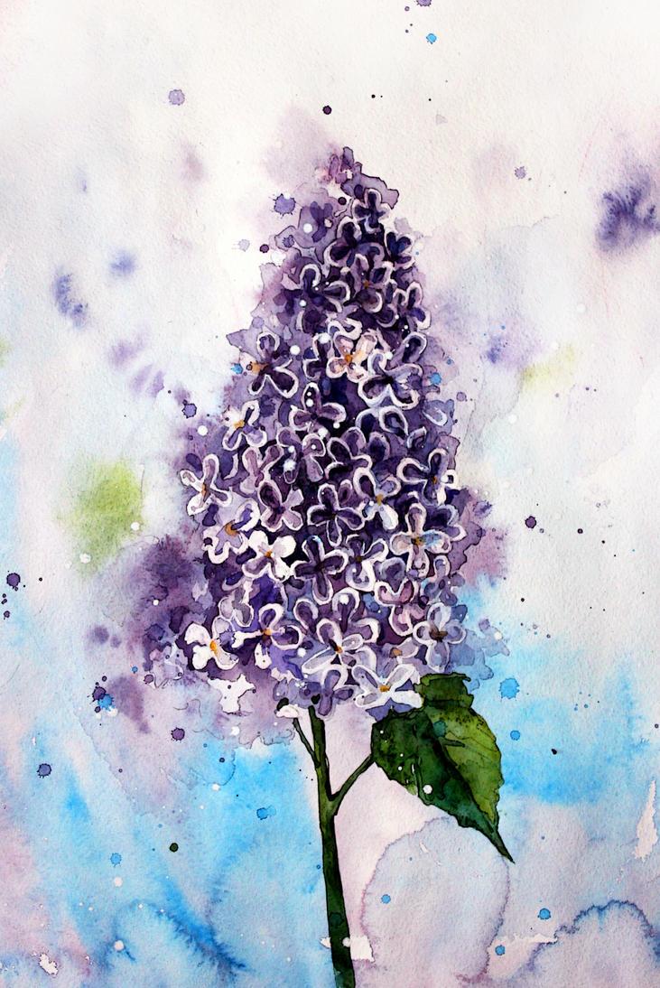 spring flower by ElenaShved