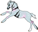 Foal E292