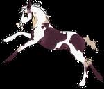 Foal E542