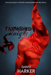 Tarnished Knight Book Cover