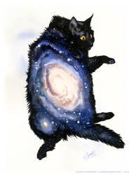 Galaxy Cat - Andromeda by GoldeenHerself