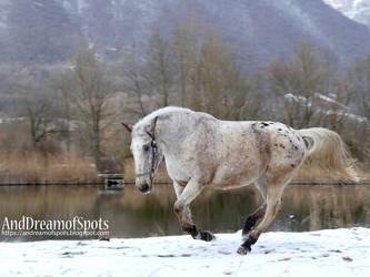 Snow Lake III by ColdRuru