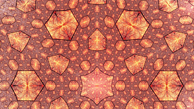 Hexagonation of the Vitreous Matrix