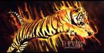 Tiger by DomiNico20