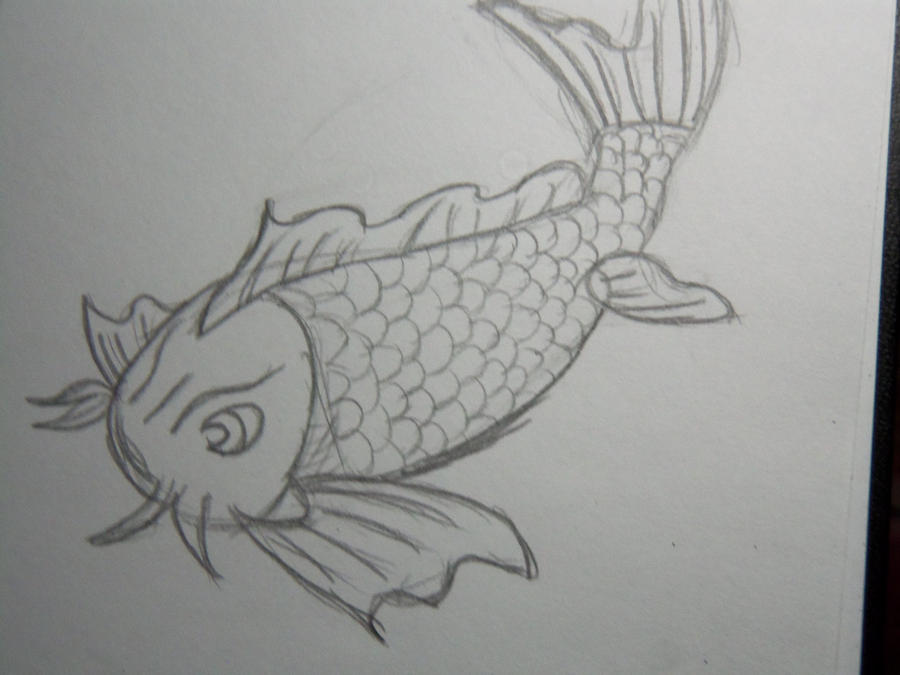 Koi fish drawing tumblr for Koi fish sketch