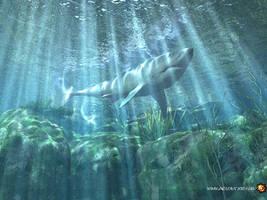 SHARK by FurrLery