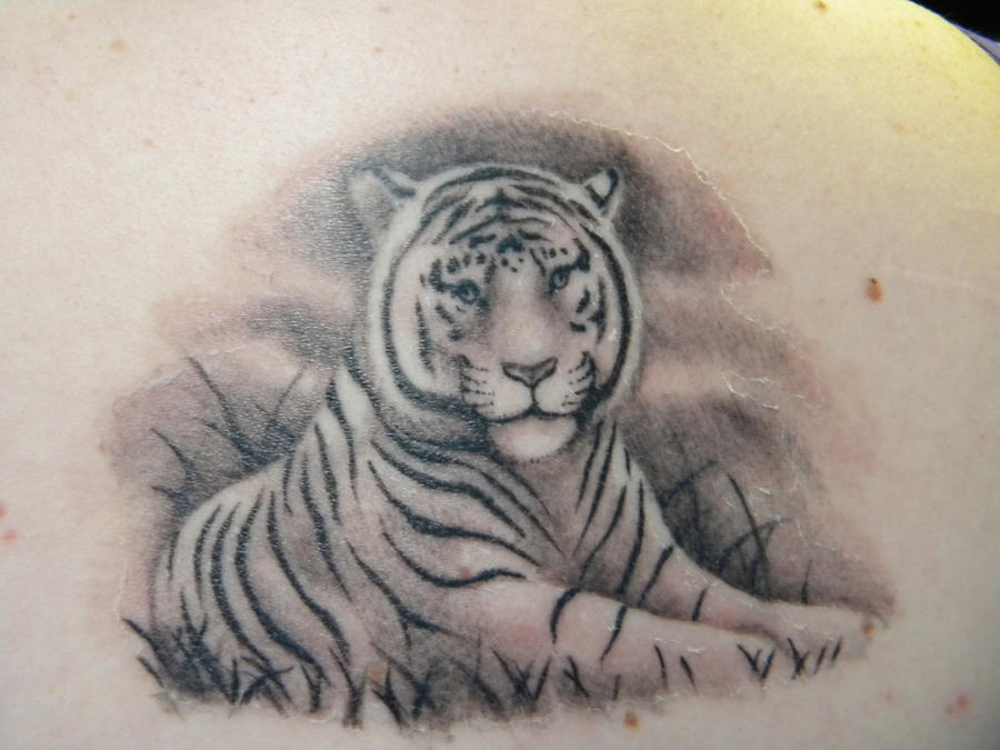 white tiger tattoo. tiger tattoos. My White Tiger