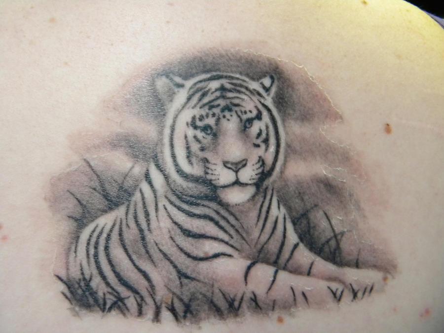 My White Tiger