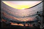 Nature of my camera
