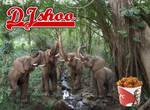 DJ SHOO -elephant