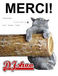 Dj Shoo - Merci by DJ-SHOO