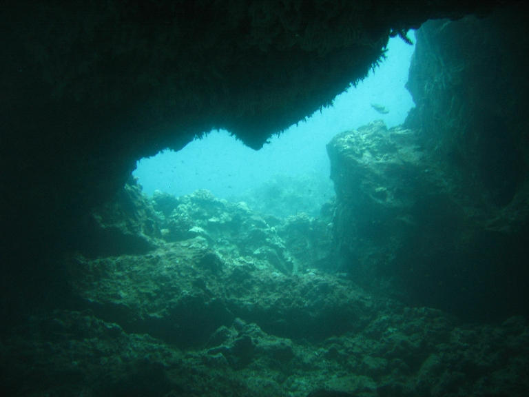 Underwater Arch by BlueStrings