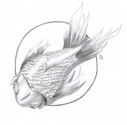 Pescadito by thejamiu