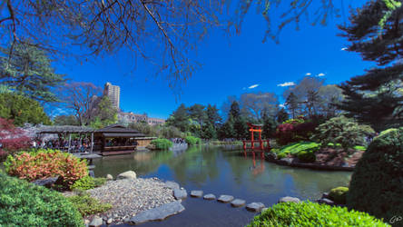 Spring at Brooklyn Botanical Garden