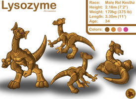 Character Layout - Lysozyme by Lysozyme