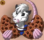 Chocolate Chip Pohl Possum