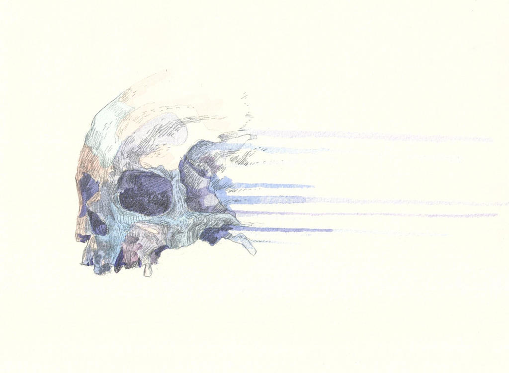 download abstract skull 320x480 - photo #21