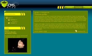 icms blog skin