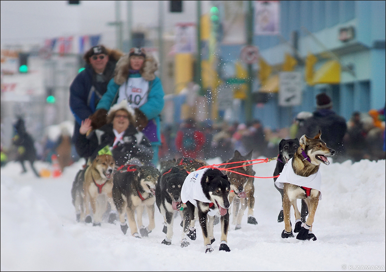 Iditarod The Last Great Race on Earth by Exileden