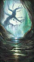 Mysterious Rainforest
