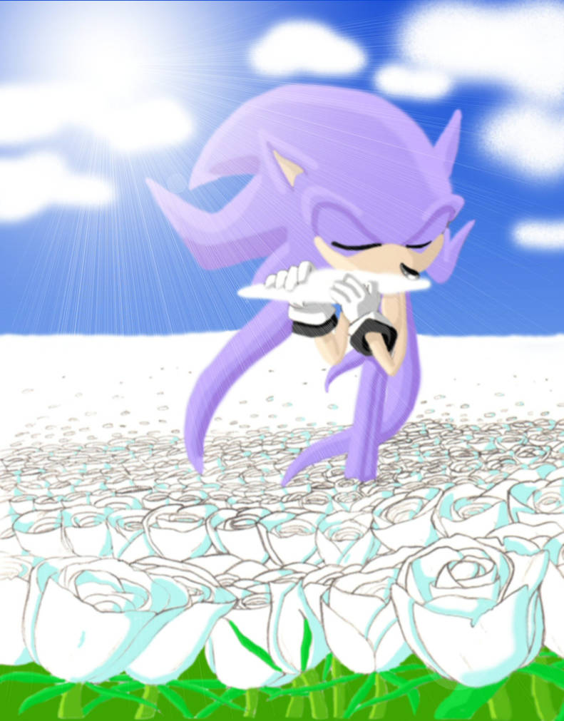 Top Five Rouge Mystic Melody Sonic Adventure 2 - Circus