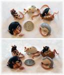 6 Tiny Rats ~ Crazy4ratties Commission
