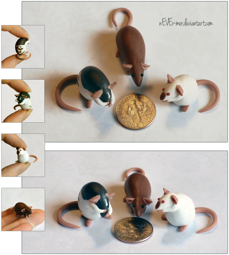 Set of 3 Dime Rats ~ MoonsongWolf Commission by nEVEr-mor