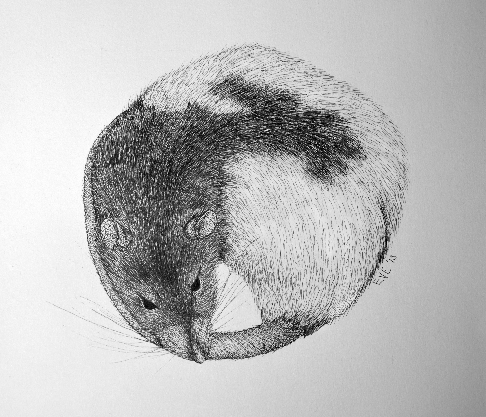 Sleepy Rattie by nEVEr-mor
