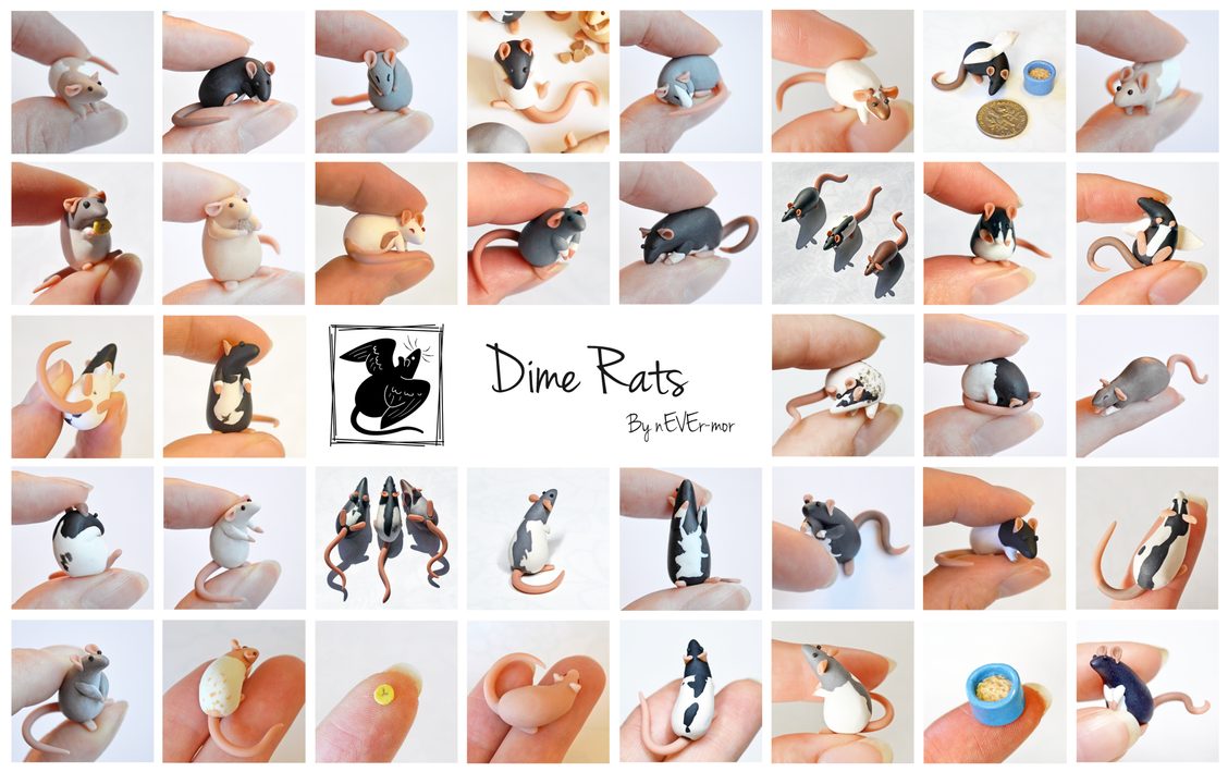 Dime Rats by nEVEr-mor