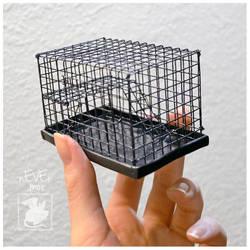 Dime Rat Cage