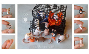 So Orange! ~ Ria Commission