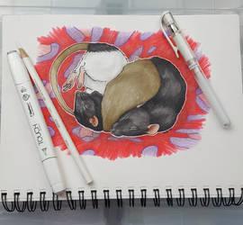 Three Sleeping Ratters