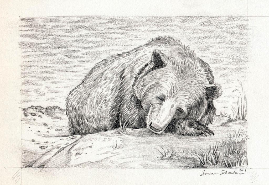 Sleeping Bear by bookstoresue