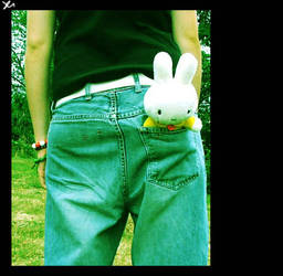 miffy in the pocket by yustine