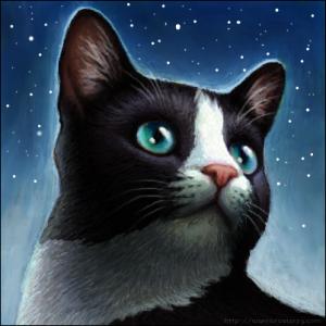 Ringofboss's Profile Picture