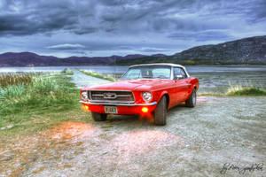 Mustang HDR by evrengunturkun