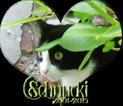 Rest in peace Schnucki by KirikoSoul