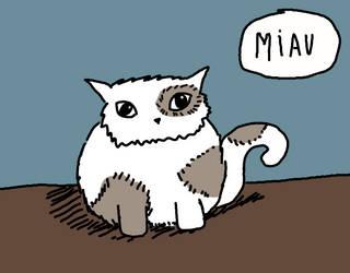Es un gato. by Nammicia