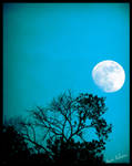 Branching to the moon