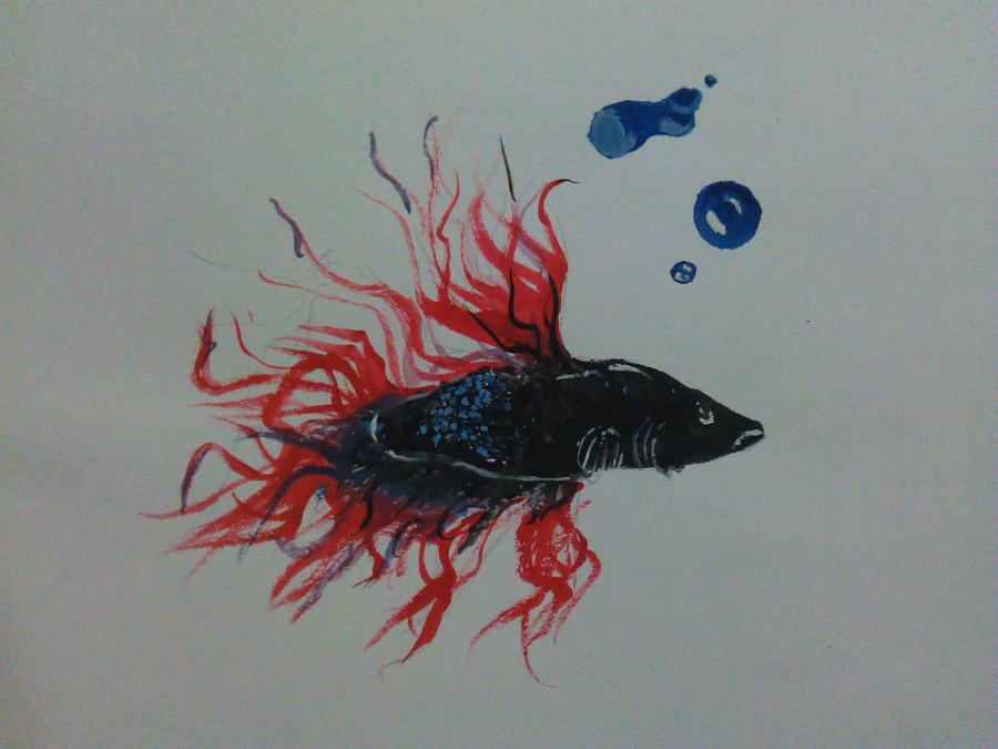 my fish by hayden-2011