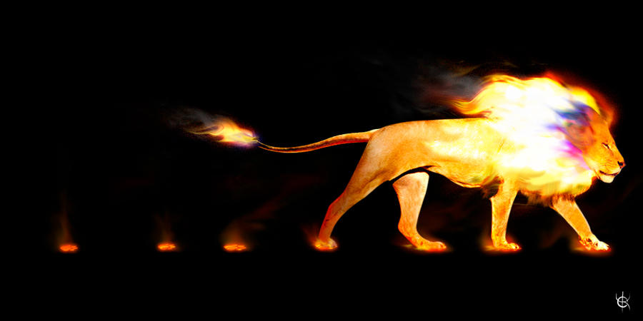 Fire Lion by K-A-Y-O