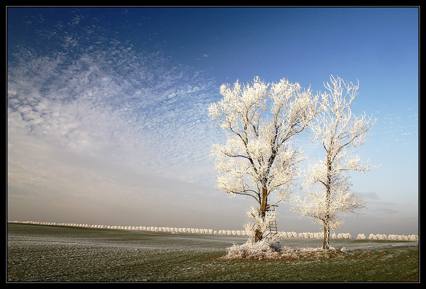 ... in Poland - part 4 by Sesjusz
