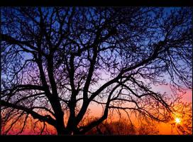 Sunset colors by Sesjusz