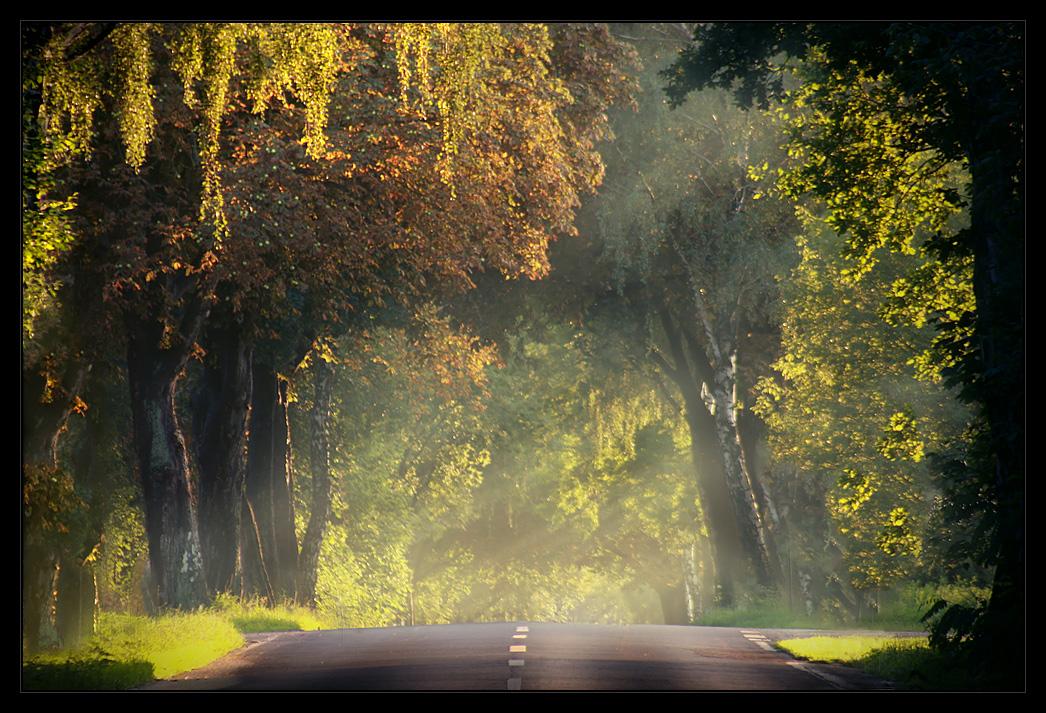 Autumn 2010 no.1 by Sesjusz