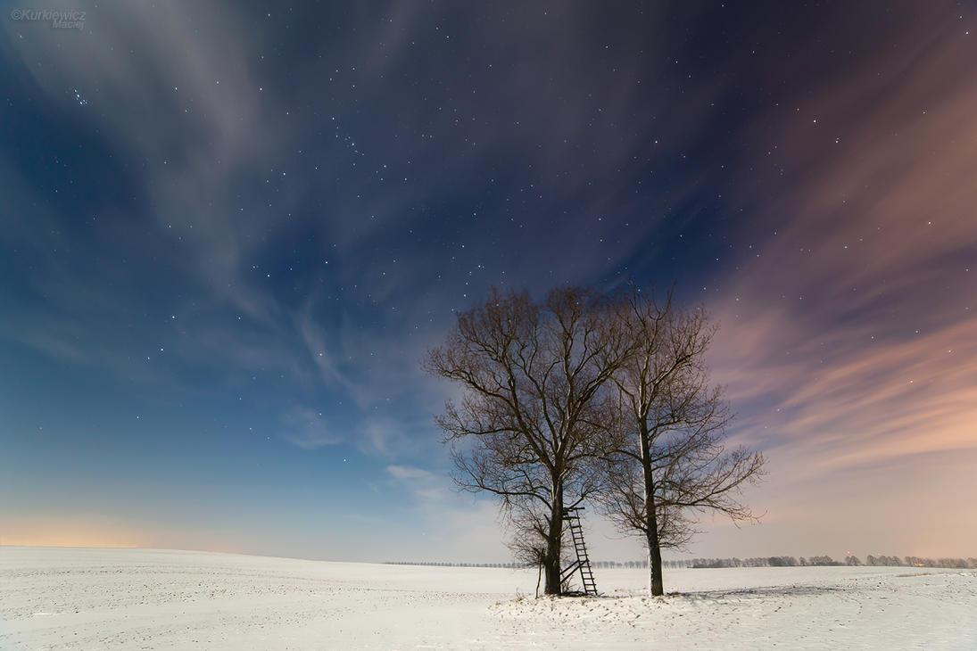 In moon light by Sesjusz