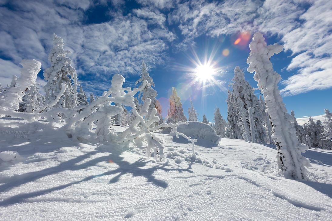 Karkonosze Mountains by Sesjusz