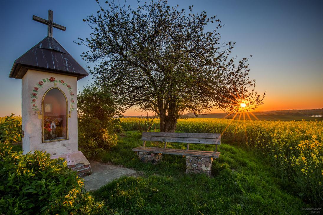 Polish May by Sesjusz